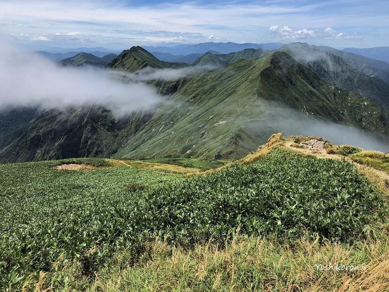 2018 8月谷川岳.jpg